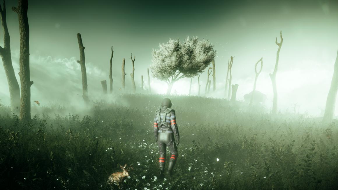 Far Cry 5 Bliss Field
