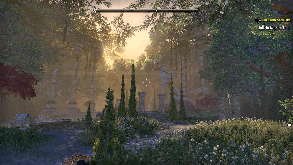 Elder Scrolls Summerset Dungeon