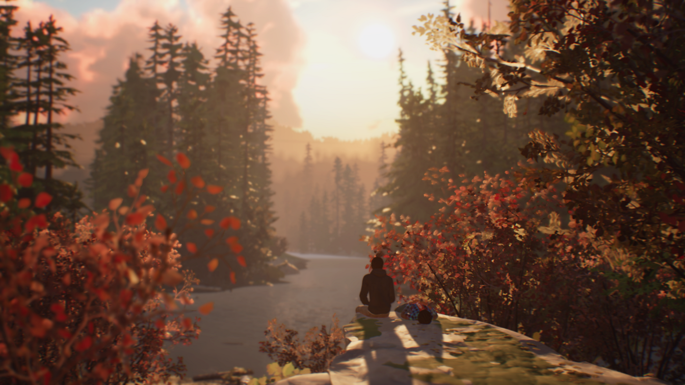 Life is Strange 2 Wilderness