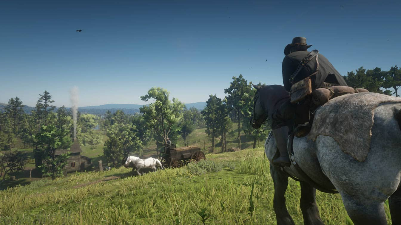 Red Dead Redemption II Countryside