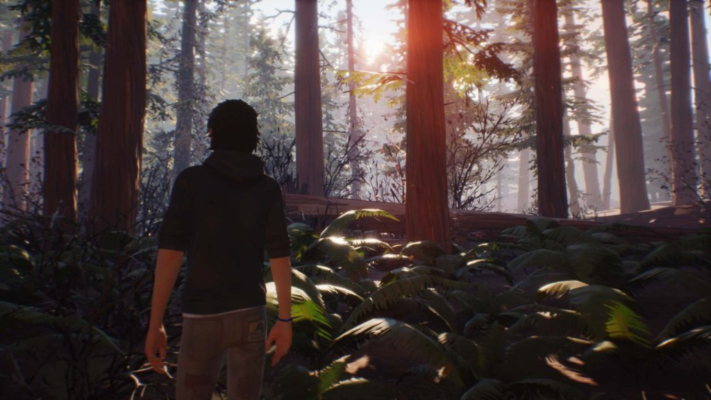 Life is Strange 2 Episode 3 Redwood Forest