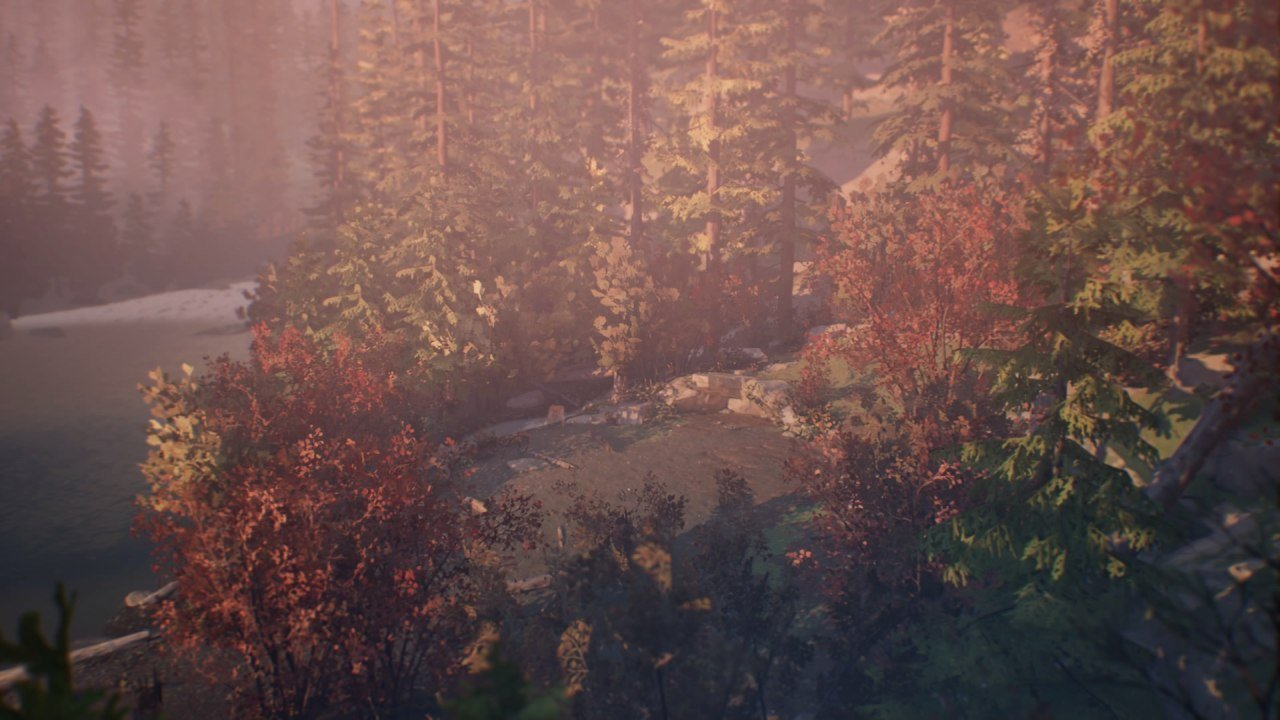 Life is Strange 2 Fall Woods