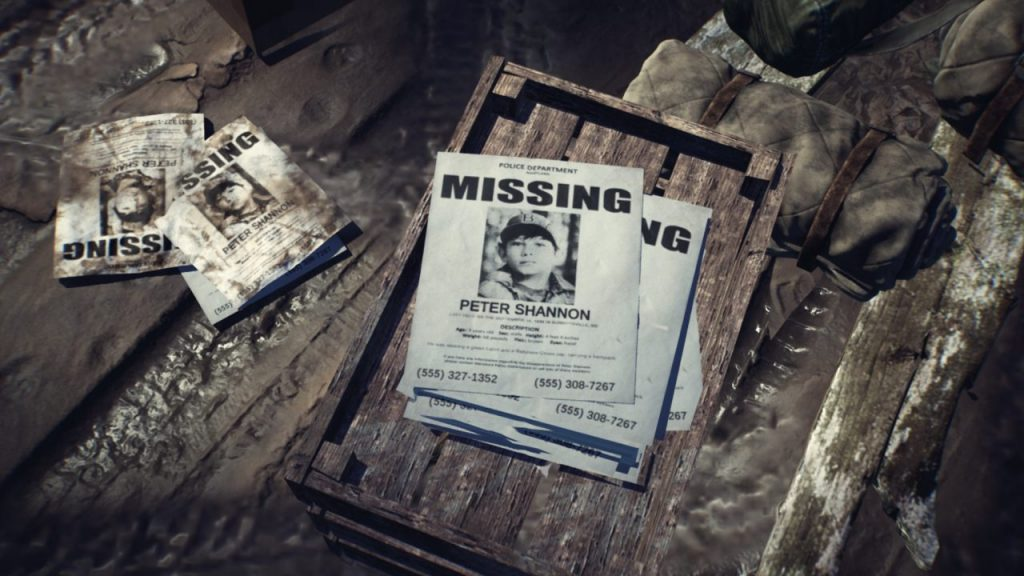 Missing Poster for Peter