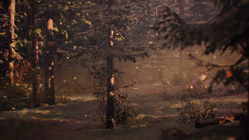 Woods Life is Strange 2 Episode 5