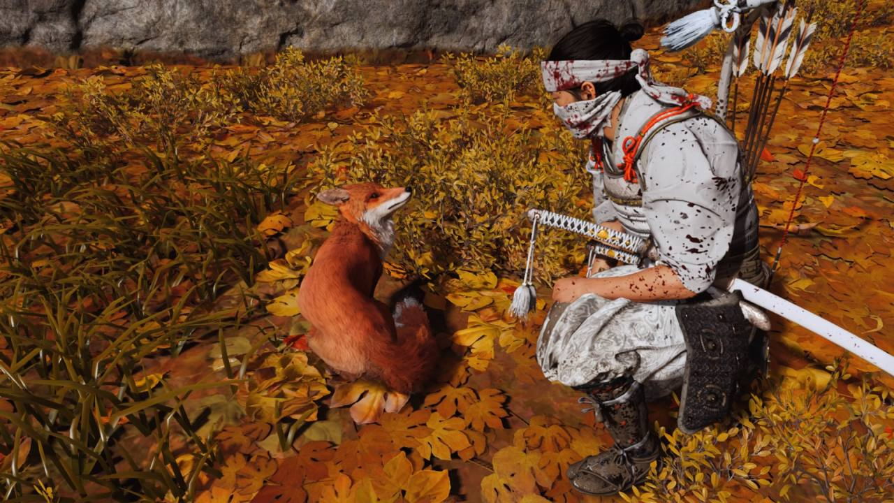 Petting the Fox in Ghost of Tsushima