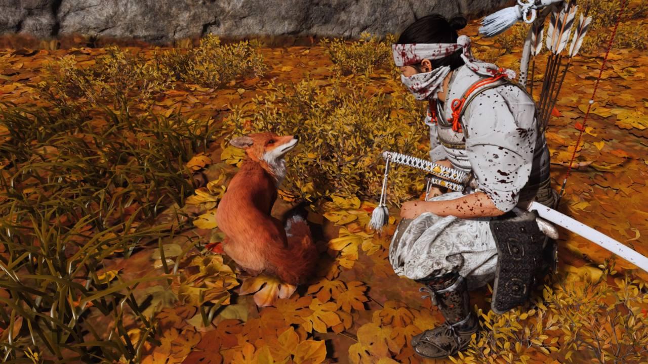 Petting the Fox in Ghost of Tsushima