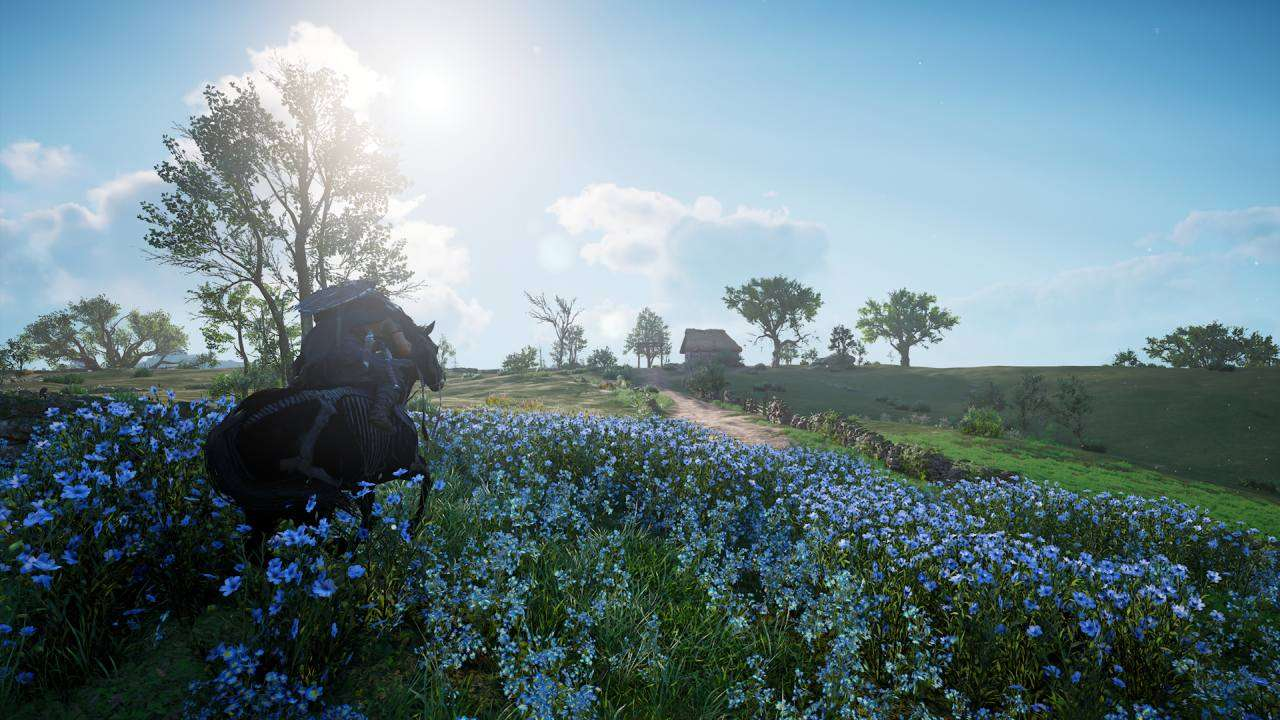 Assassin's Creed Valhalla Blue Flowers