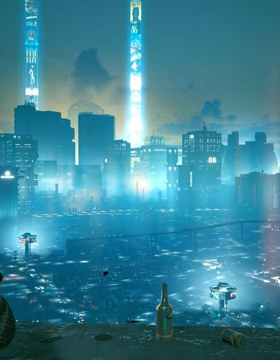 Overlooking Night City